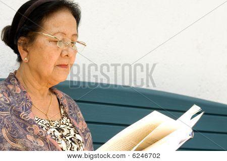 Elderly Woman Read A Book Outdoor