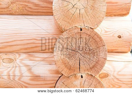 Wooden Hause. Sectioned Log.