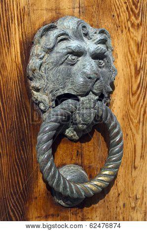 Gilded Lion Head Door Knob On The Wooden Door In Venice