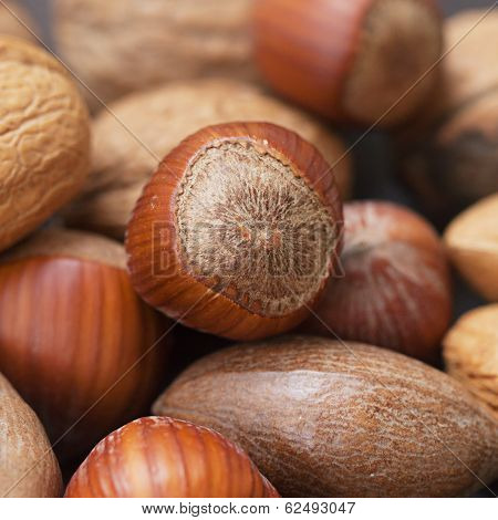 Macro Background Of Heap Of Nuts