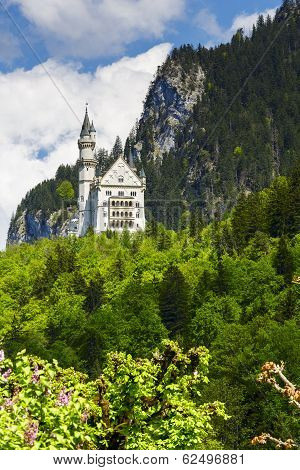Neuschwanstein Above