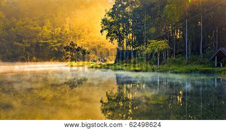Morning At A Swamp Lake On Nongchangkod River, Chiangrai, Thailand