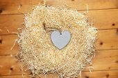 Lone Blue Wooden Heart In A Love Nest