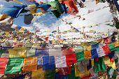 image of himachal pradesh  - Prayer flags with stupas  - JPG