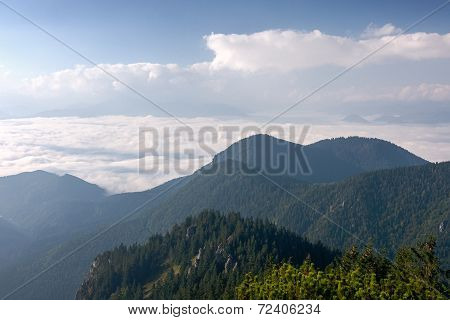 Morning On Summer Mountain Ridge - Slovakia