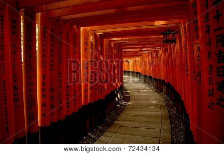 Red Torii Gates In Fushimi Inari Taisha Shrine In Kyoto