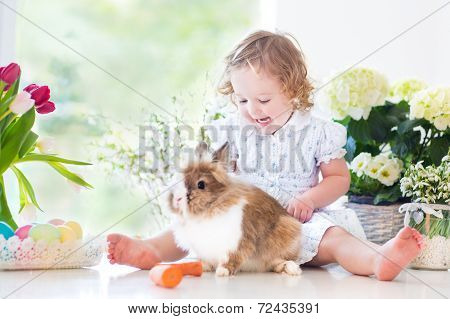 Cute Curly Toddler Girl Playing With A Bunny Next To Flowers And Easter Eggs Sitting In A White Room