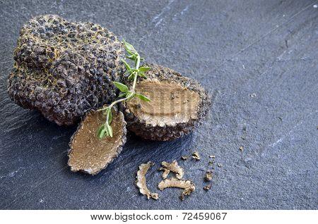 rare and expensive black truffle