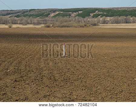 Image of field in early spring
