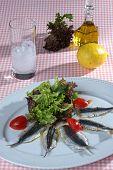picture of ouzo  - sardine fillet ouzo tomato lemon LETTUCE oil - JPG