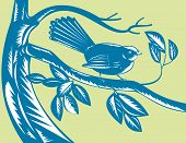 stock photo of fantail  - vector illustration of a new zealand Fantail bird on branch - JPG