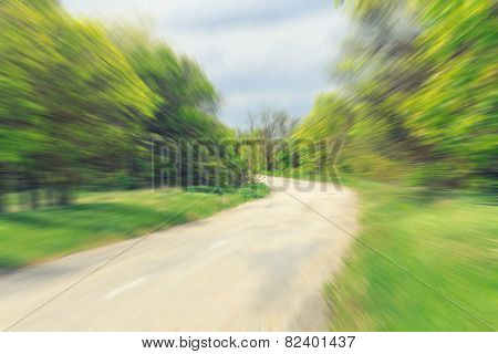 Abstract image of back road in forest