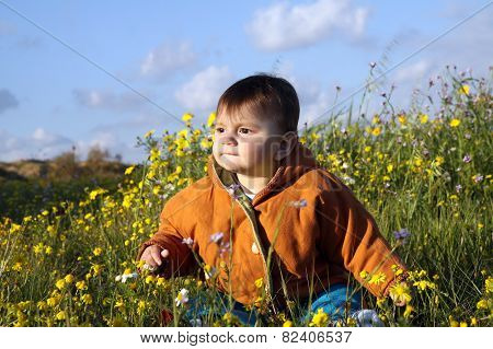 Child Sits In A Meadow