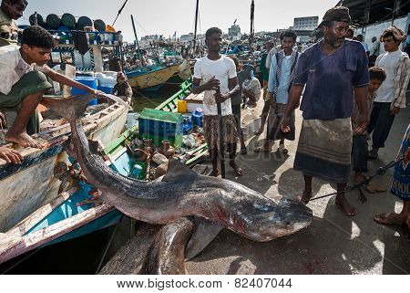 Fish Market In Yemen