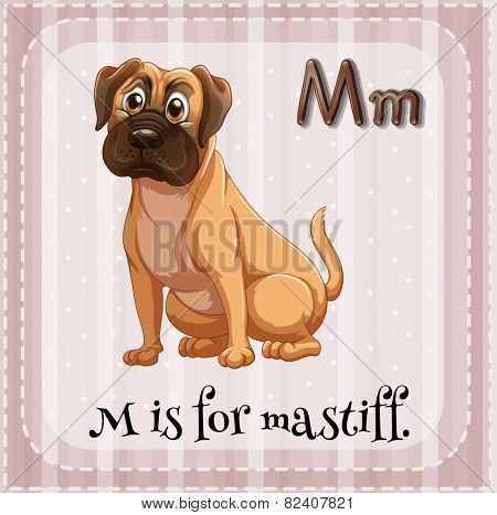 Illustration of a letter M is for mastiff