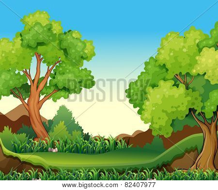Illustration of a forest view at daytime