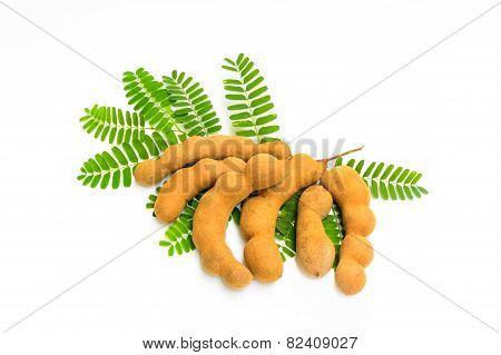 Tamarind With Leaf Isolated On White