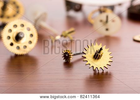 Different gears on the table closeup