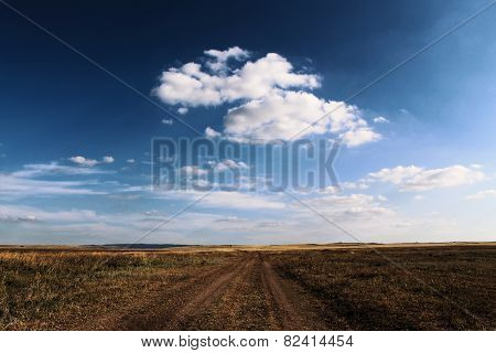 Road in a steppe