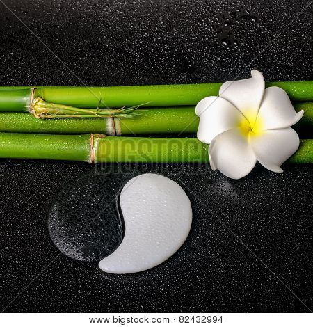 Spa Still Life Of White Frangipani Flower, Symbol Yin Yang And Natural Bamboo With Leaves On Zen Bas