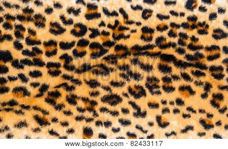 Texture Of Leopard Skin And Fur