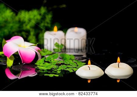 Spa Background Of Plumeria Flower, Green Branch Asparagus, Fern And Candles On Zen Basalt Stones Wit