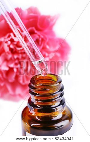 Dropper bottle of perfume with clove on white background