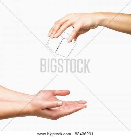 Hands Dropping White Cube On White Background
