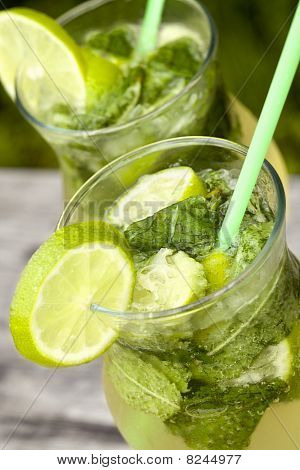 Fresh Mojito Cocktail
