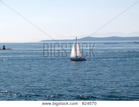 Jib and Main on the Bay