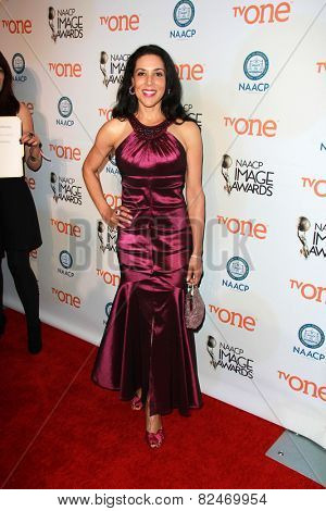LOS ANGELES - FEB 5:  Toni Ann Johnson at the 46th NAACP Image Awards Non-Televised Ceremony  at a Pasadena Convention Center on February 5, 2015 in Pasadena, CA