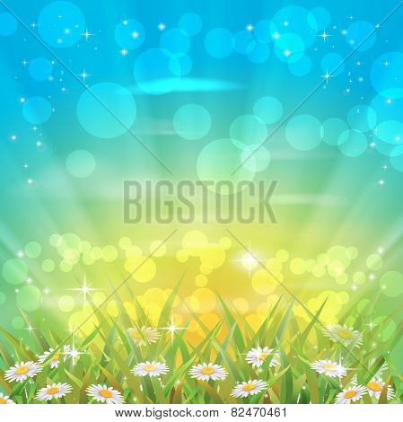 Beautiful camomiles. Vector of spring background with gradient and radiance.