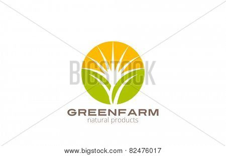 Sun over Abstract Plant Logo Farm design vector template circle shape. Natural Organic Fresh products Logotype concept icon.