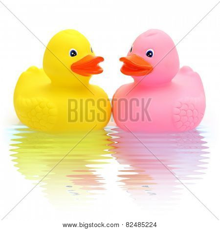 Rubber duck couple in love
