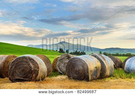 Haystack at sunset, Tuscany landscape, Toscana, Italy