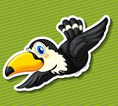 picture of toucan  - Illustration of a close up toucan - JPG