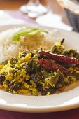 foto of okras  - Indian vegetarian fried okra with basmati rice - JPG