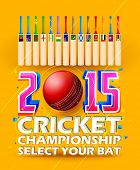 foto of cricket bat  - illustration of cricket bat of different participating countries - JPG