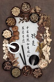 picture of chinese calligraphy  - Chinese herbal medicine selection - JPG