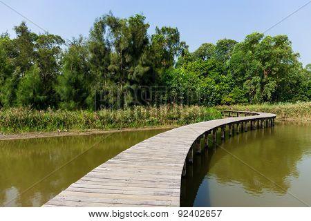 Walkway over the lake