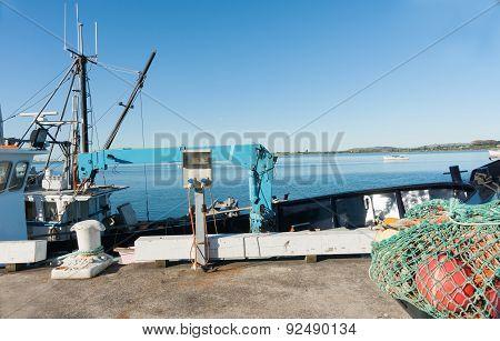 Fishing Wharf, Tauranga.