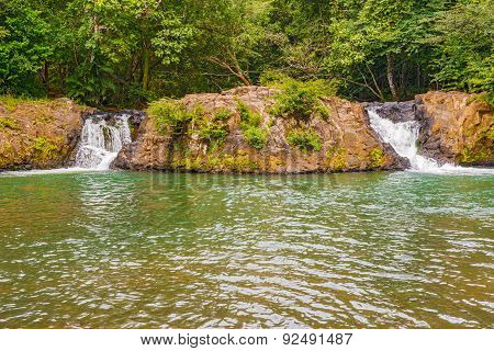 Small Falls In Rain Forest In Panama