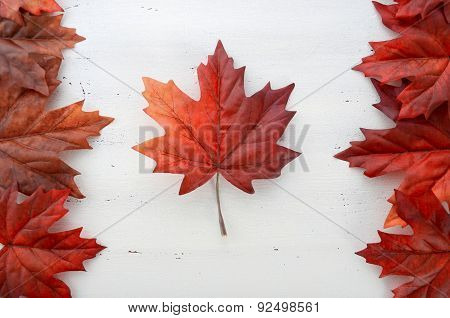 Happy Canada Day Red Silk Leaves In Shape Of Canadian Flag.