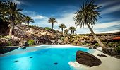 stock photo of canary  - outer Jameos del Agua pool - JPG