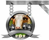 pic of food chain  - Dairy products sign with head of cow cans for the transport of milk green grass and three daisy flowers - JPG