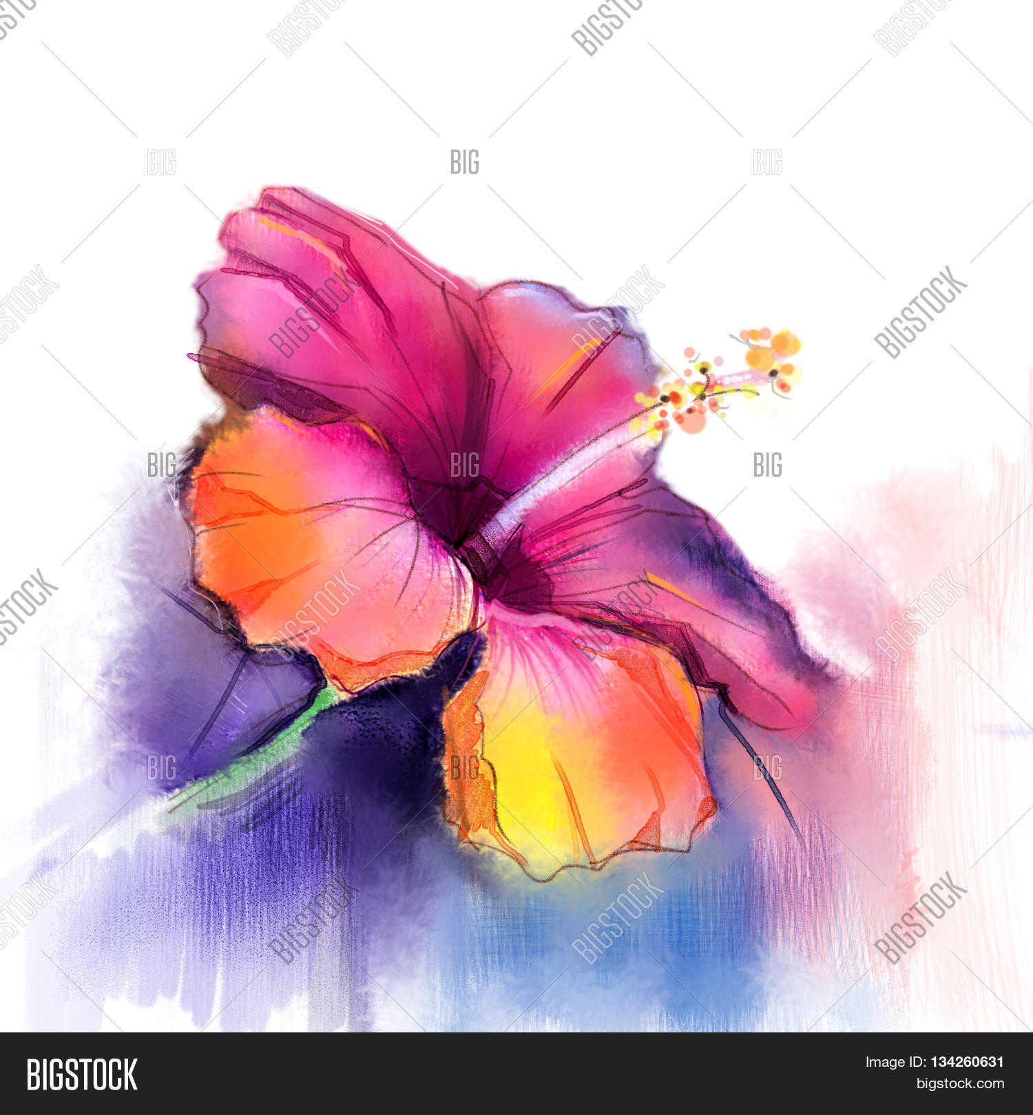 Paint in pastel colors painted flower sketch stock photo amp stock