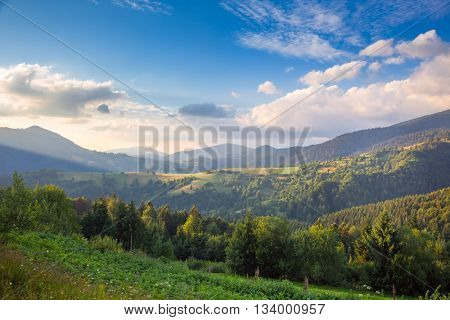 Summer day in The Mountain Valley, beautiful nature,  Carpathian, Ukraine, Europe