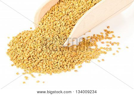Unprocessed whole fenugreek (Trigonella foenum-graecumcumin) seeds in wooden scoop over white background