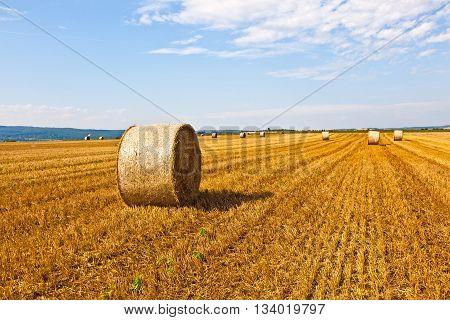 bale of straw on field under blue sky