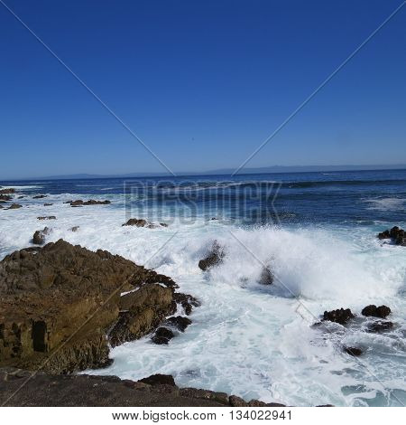 Waive action at Asilomar State Preserve in Pacific Grove, California, U.S.A.